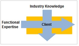 Industry and Functional Expertise