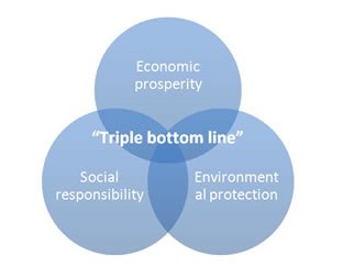 The Triple Bottom Line - Strategy Skills Training from